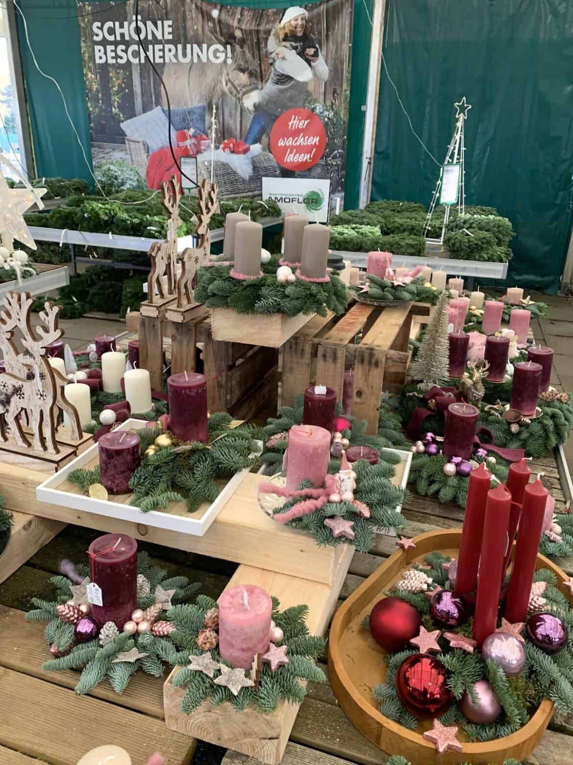 Adventszauber im Gartencenter Amoflor